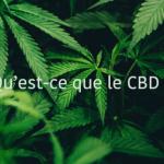 Est-ce que le CBD est autorisé en France ?