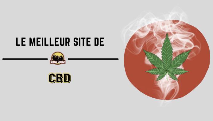 Où acheter le meilleur CBD en France ?